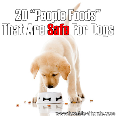 20 People Foods That Are Safe For Dogs