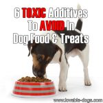 6 Toxic Additives To AVOID In Dog Food & Treats