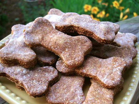 Homemade Treats For Your Pet Dog