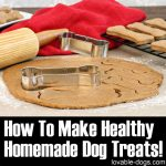 How To Make Healthy Homemade Dog Treats!