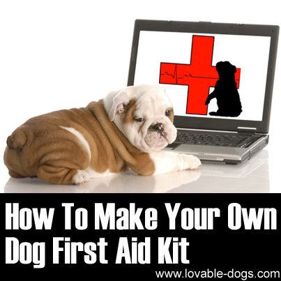 How To Make Your Own Dog First Aid Kit