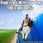 Road Trips With Your Dog: Do's and Don'ts