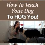 How To Teach Your Dog To HUG You!