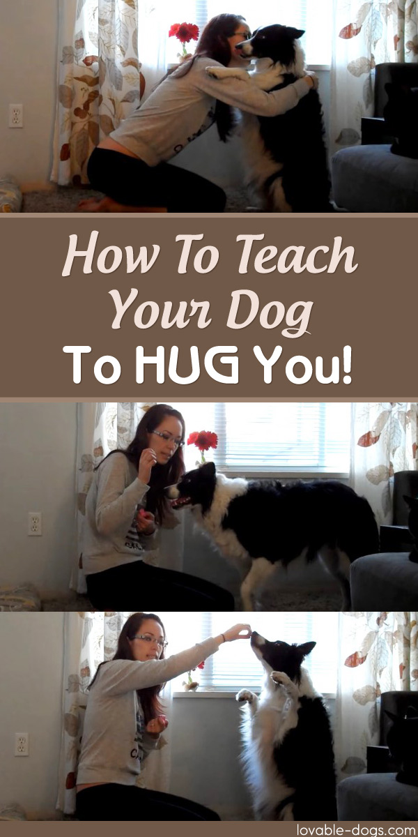 How To Teach Your Dog To Hug You
