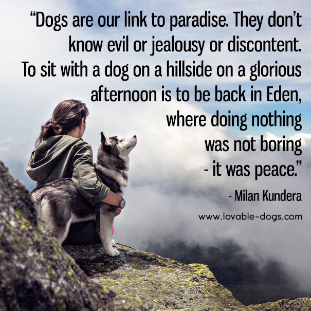 Dogs Are Our Link To Paradise